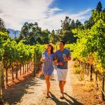 From Sonoma Wine Country to San Diego Beaches: California in Style