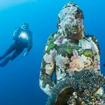 The World Traveller's Guide to Picture Perfect Underwater Photography