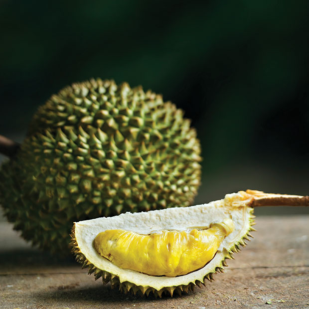 where to try durian