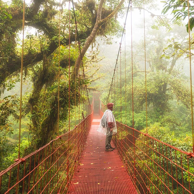 person walking over a suspension bridge in cloud forest