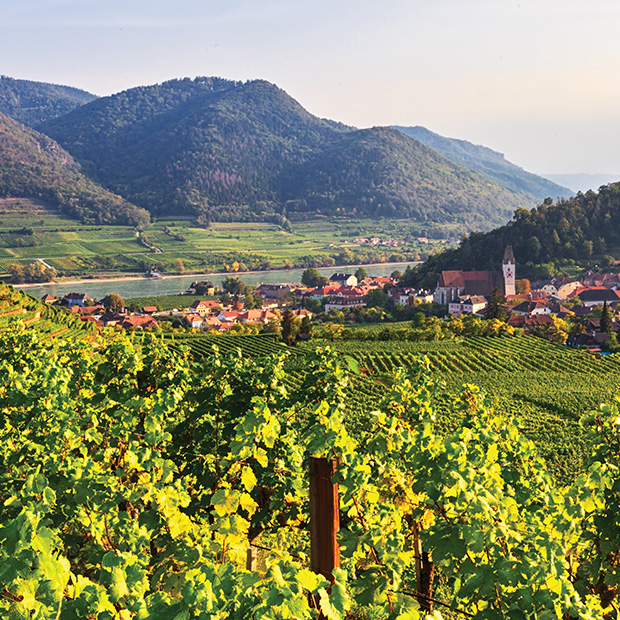 austria's wine country along the danube