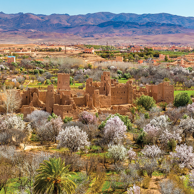 valley of the roses in morocco