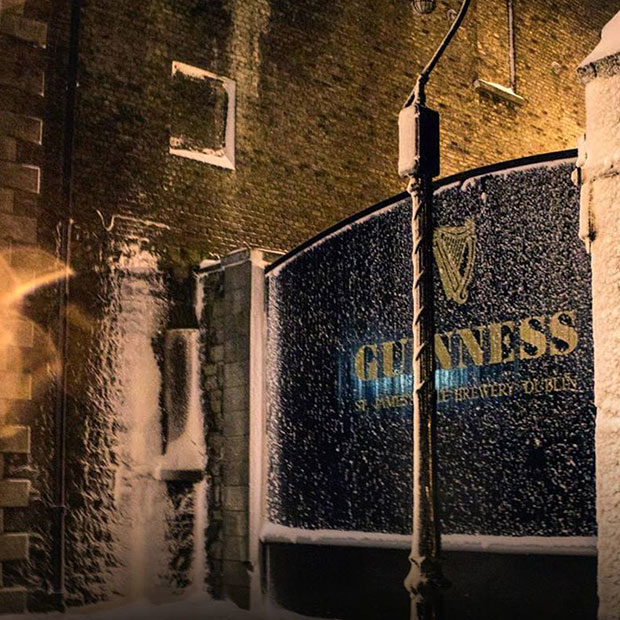 Guinness Connoisseur Experience