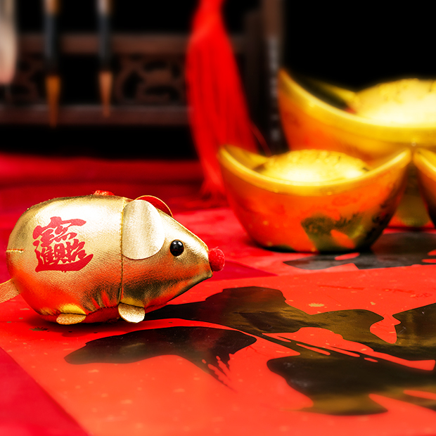 cute golden rat surrounded with red chinese new year decorations