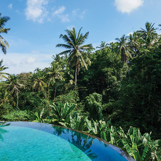 turquoise-blue-infinity-edge-pool-and-lush-green-bali-jungle
