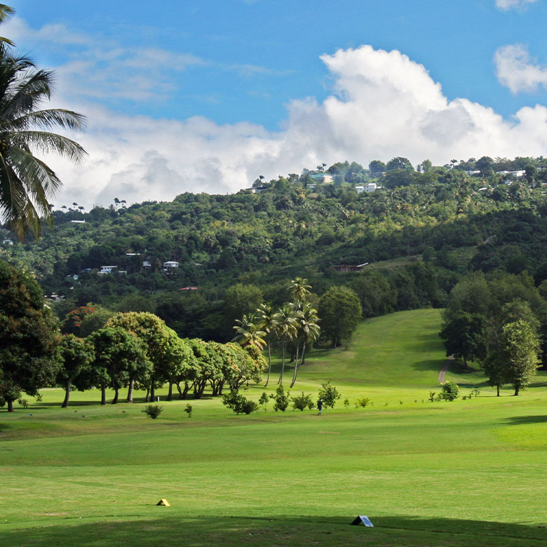 Rolling hills at St. Lucia Golf and Country Club