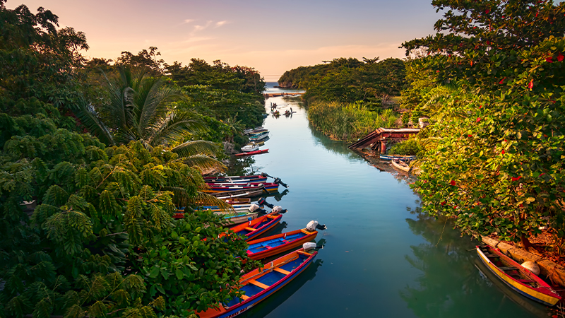multi coloured boats docked along river in jamaican jungle